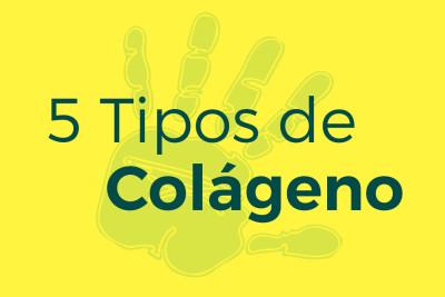 5 Tipos de colágeno