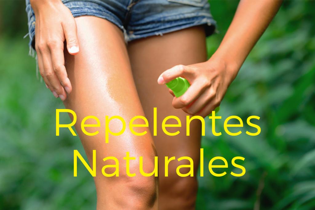 4 efectivos repelentes naturales