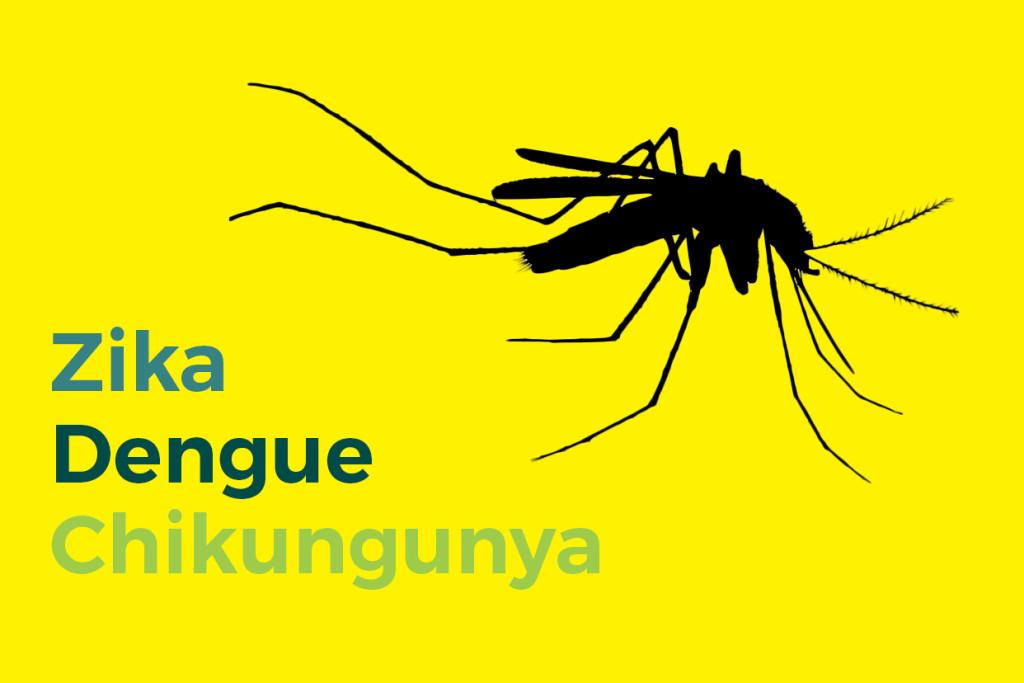 Dengue, chikungunya y zika