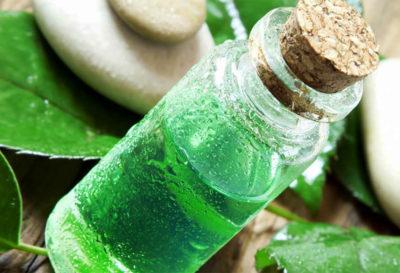 Aceite de té verde hecho en casa