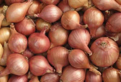 4 beneficios de la cebolla