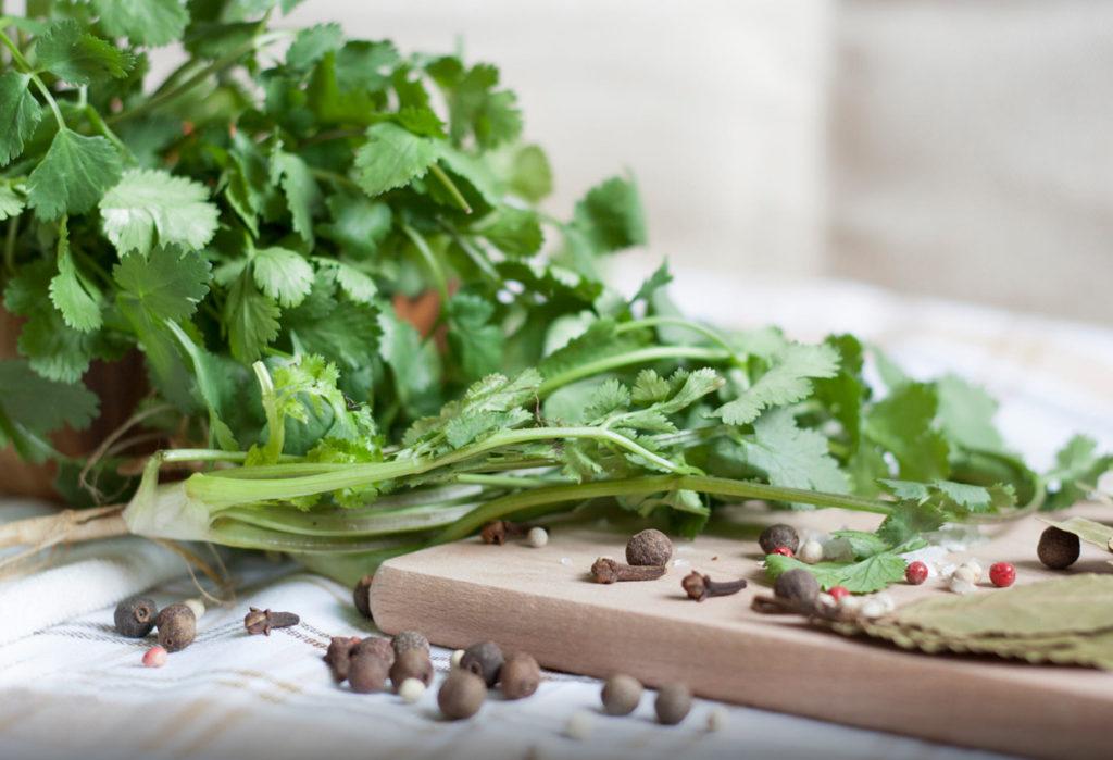 5 beneficios del cilantro