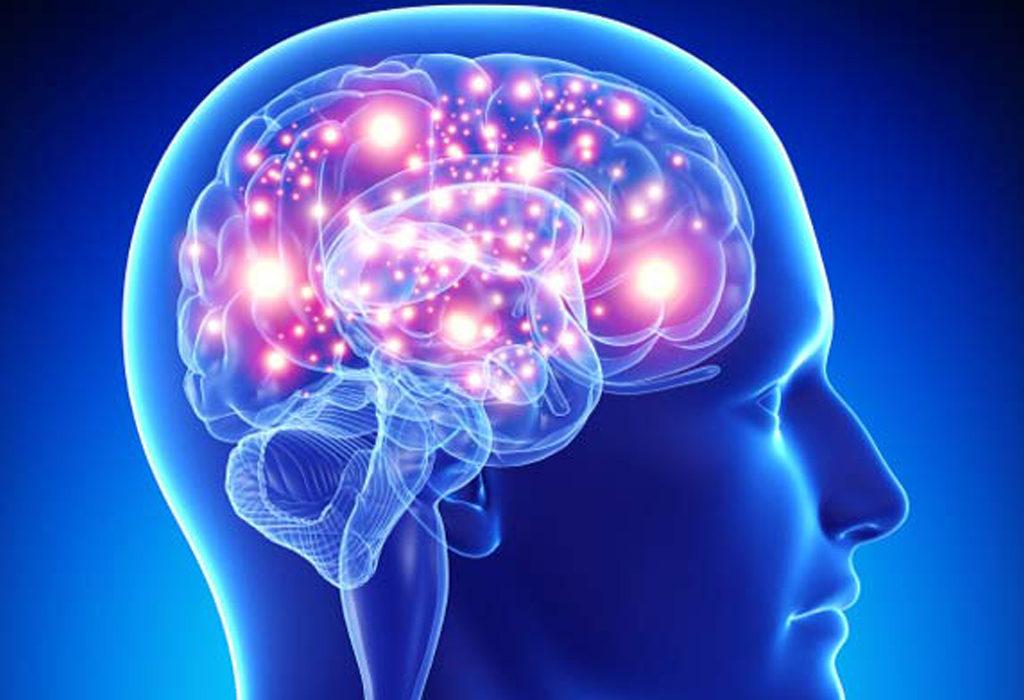 El omega 3 en el desarrollo intelectual